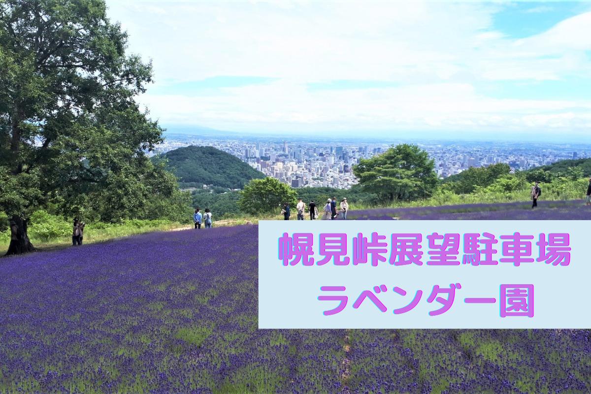 【スポット】『幌見峠展望駐車場のラベンダー園』~峠の頂上はラベンダー畑と札幌の街並みを一緒に楽しめるビュースポット♪