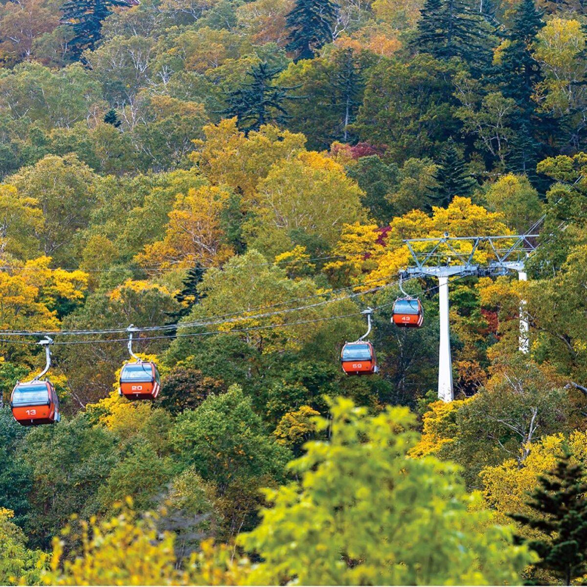 札幌紅葉2021札幌国際スキー